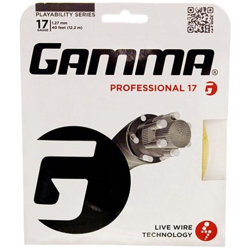 Gamma Professional 17 String