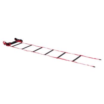 Gamma Mobility Ladder